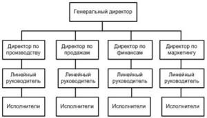 Рисунок 1. Линейно-функциональная структура управления